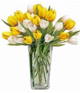 Tulips Bright Mixed Bouquet